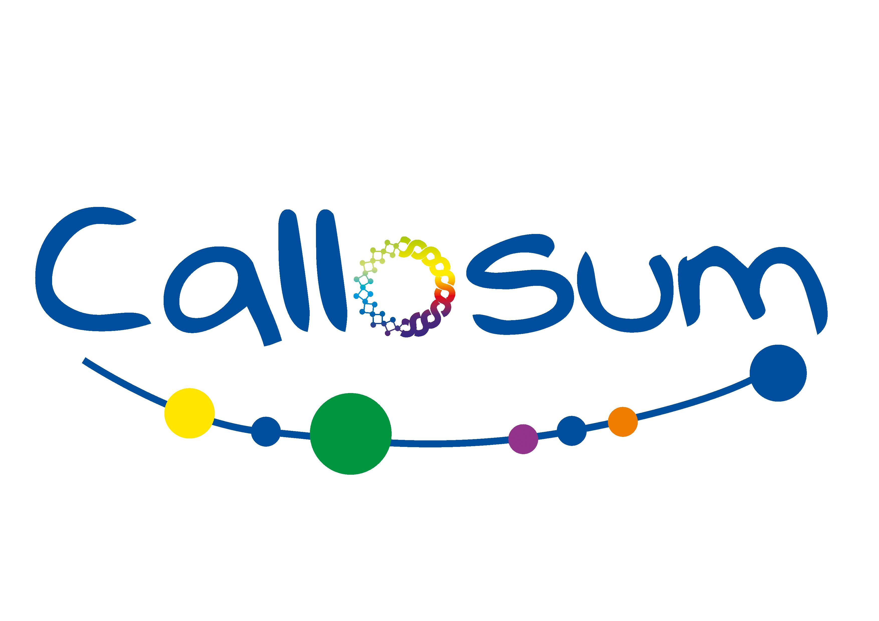 Callosum - Die Denkmanufaktur